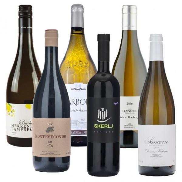 6 Slow Wines im Paket